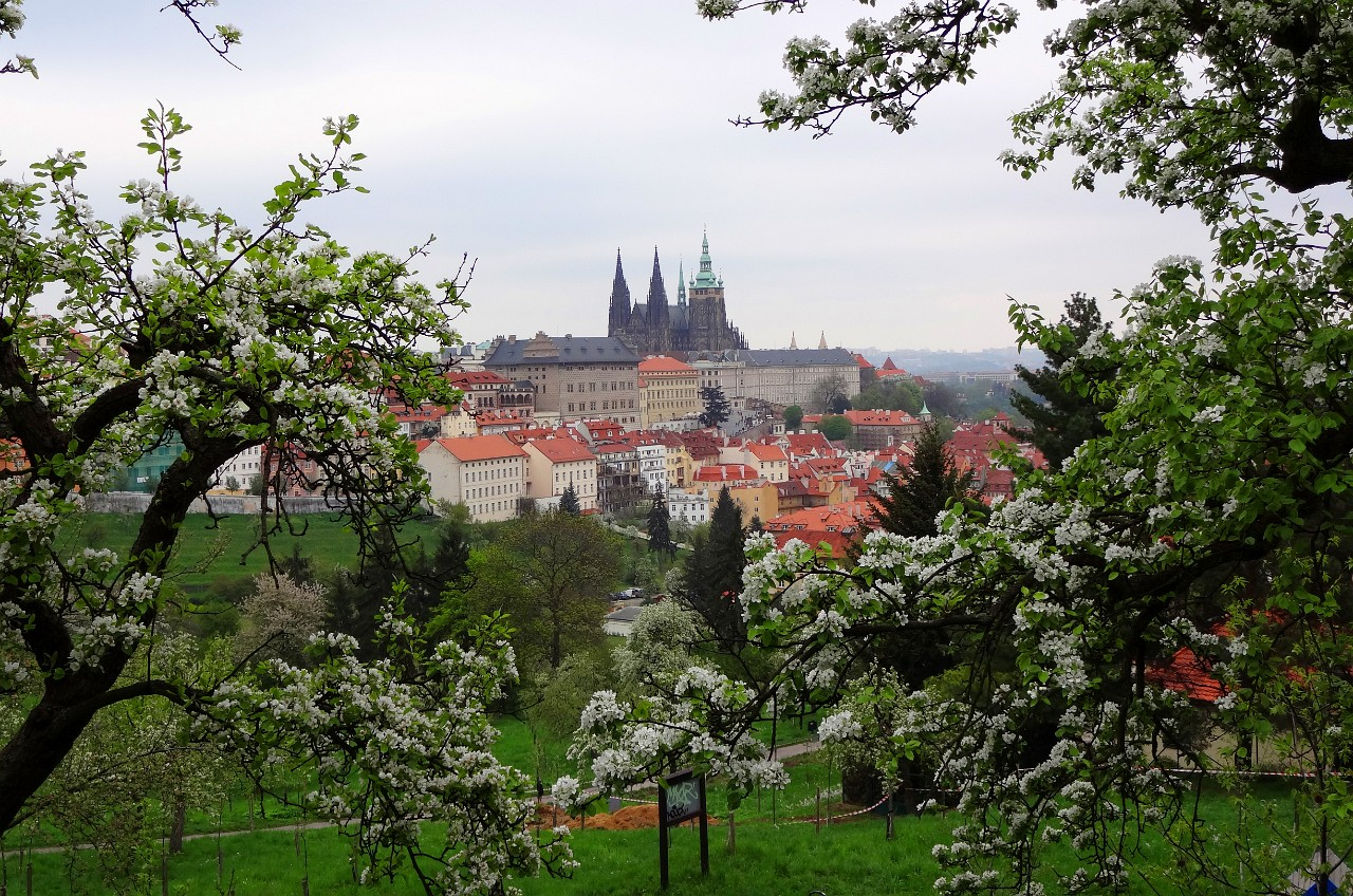 Prague Castle from walk to Petrin Tower