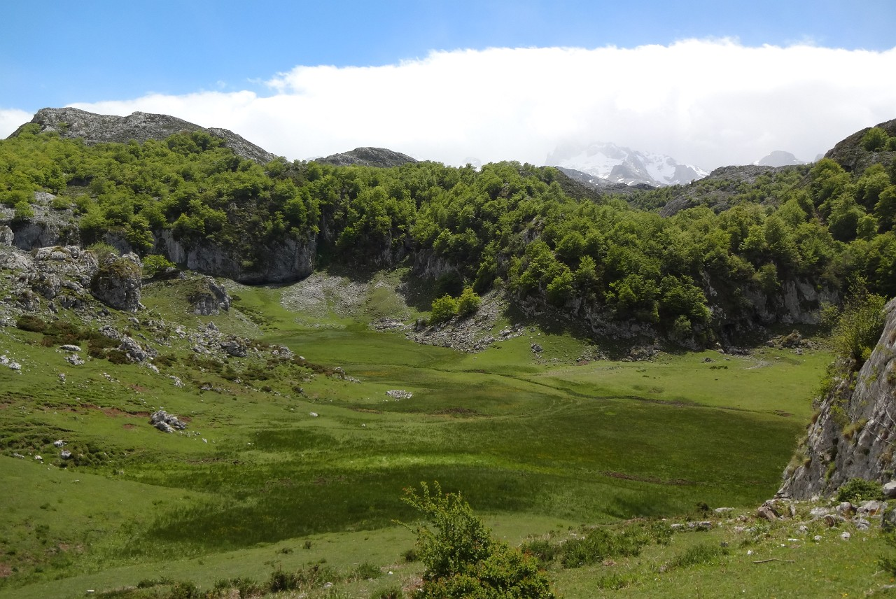 Green valleys and beautiful Picos