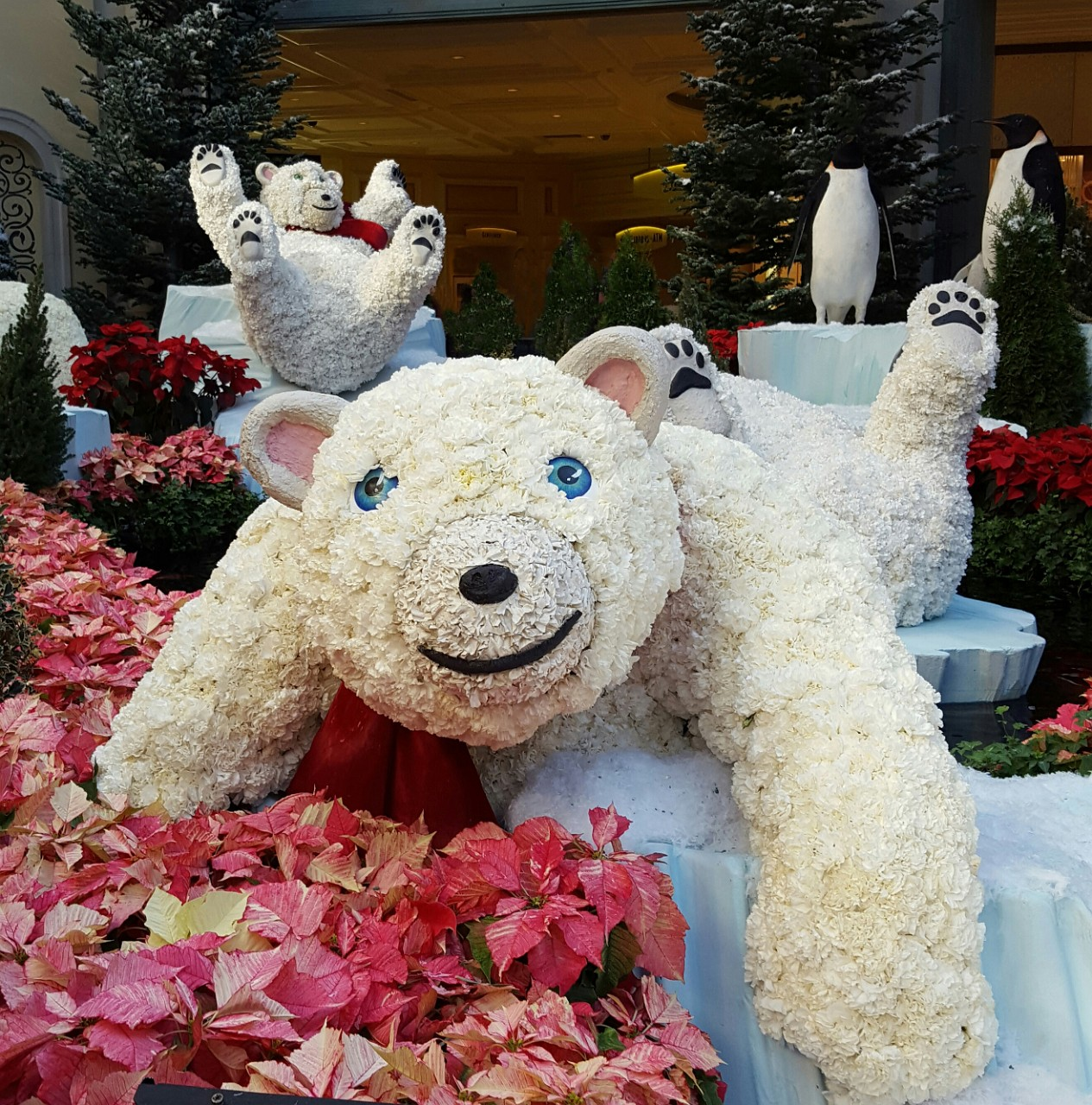 Bellagio polar bear cub