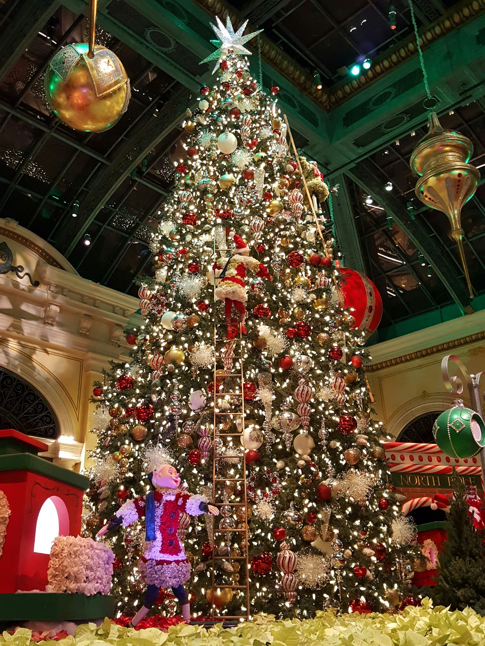 Bellagio tree